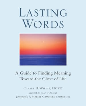 Lastin Words book by Claire B Willis